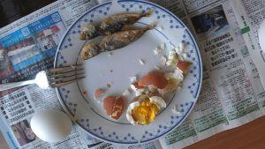 exploded egg
